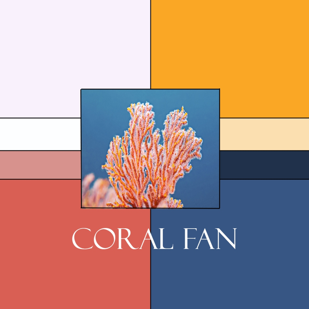 Coral Fan Colorway